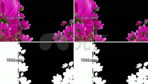 带遮罩 边框装饰 花朵