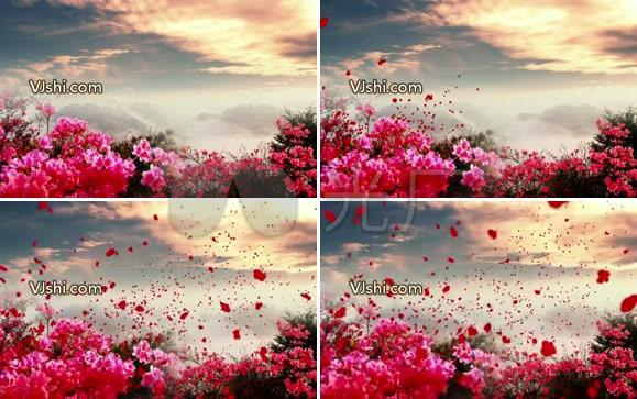 映山红 中国民歌 晚会背景 革命 红军