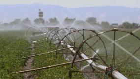 农田灌溉 农业