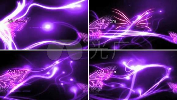 紫色蝴蝶动态素材