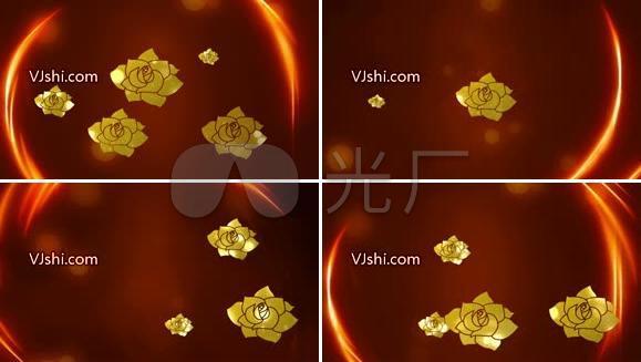 金色荷花朵朵开