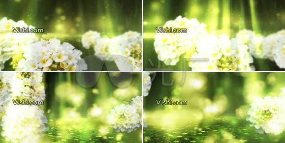 花朵唯美迷幻