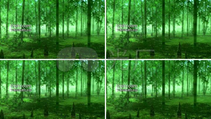 雨竹林傣族舞蹈背景竹林下雨_1920x1080_高清視頻素材