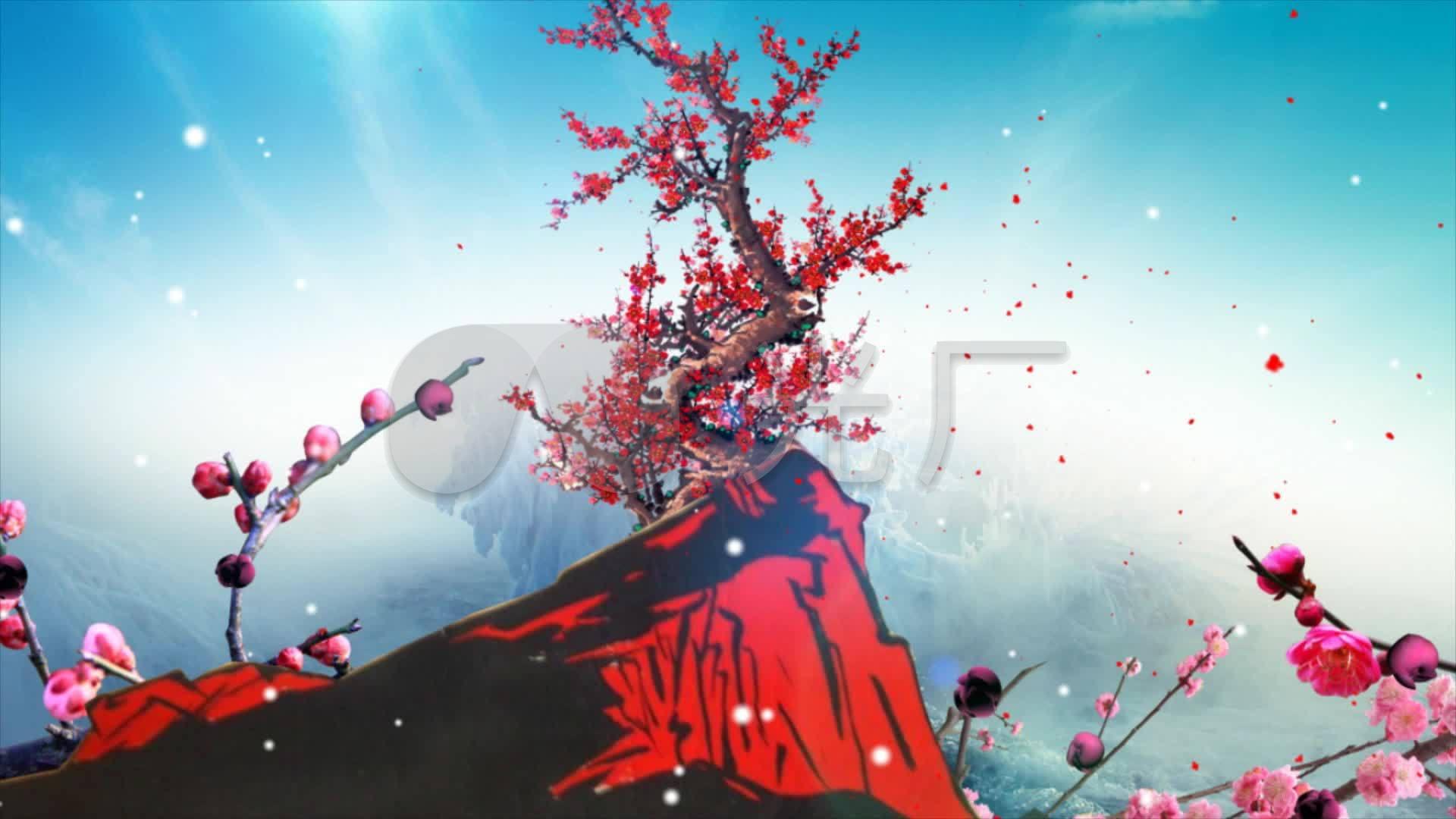 最新红梅赞配乐_1920X1080_野鸡视频高清下素材的视频打图片