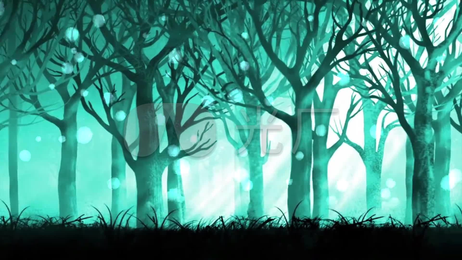 梦幻森林唯美童话素材_1920x1080_高清视频素材下载图片