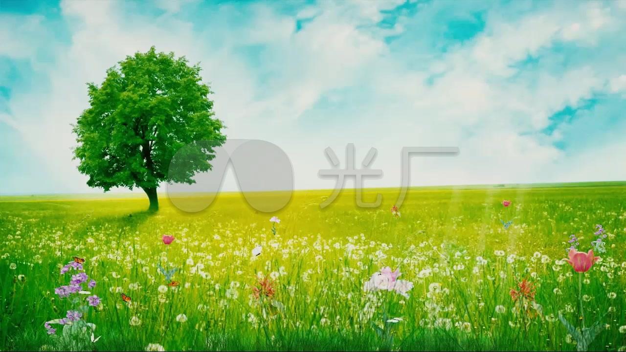 唯美蓝天白云草地蝴蝶唯美背景素材图片