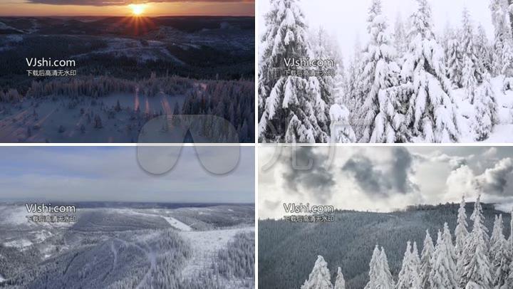4K航拍黑森林阳光小鸟雪景冰雪融化