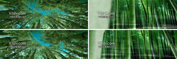 燕归巢竹林风素材竹海led视频视频_1944X648教油画竹子图片