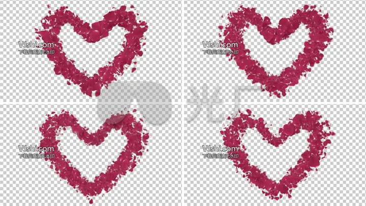 心形花瓣玫瑰花视频素材