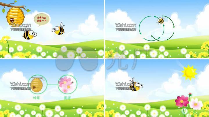 蜜蜂采蜜儿童科普动漫
