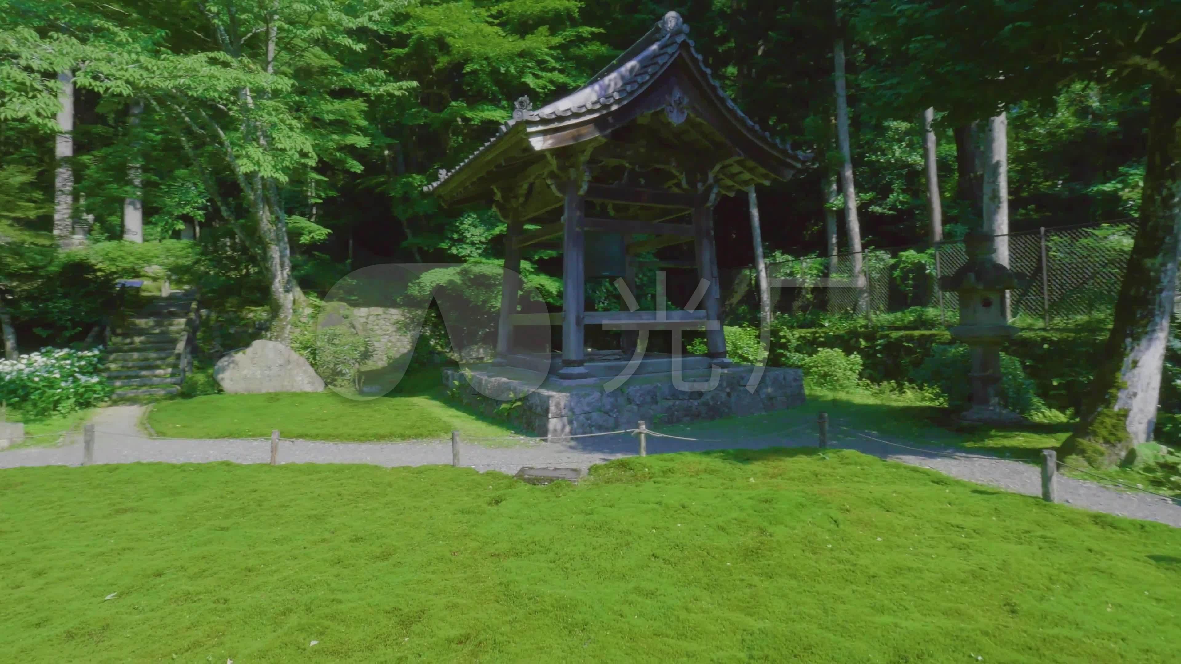 古树美女美女菜地禅意同事田野_3840X2160_乡村我致命的寺庙图片