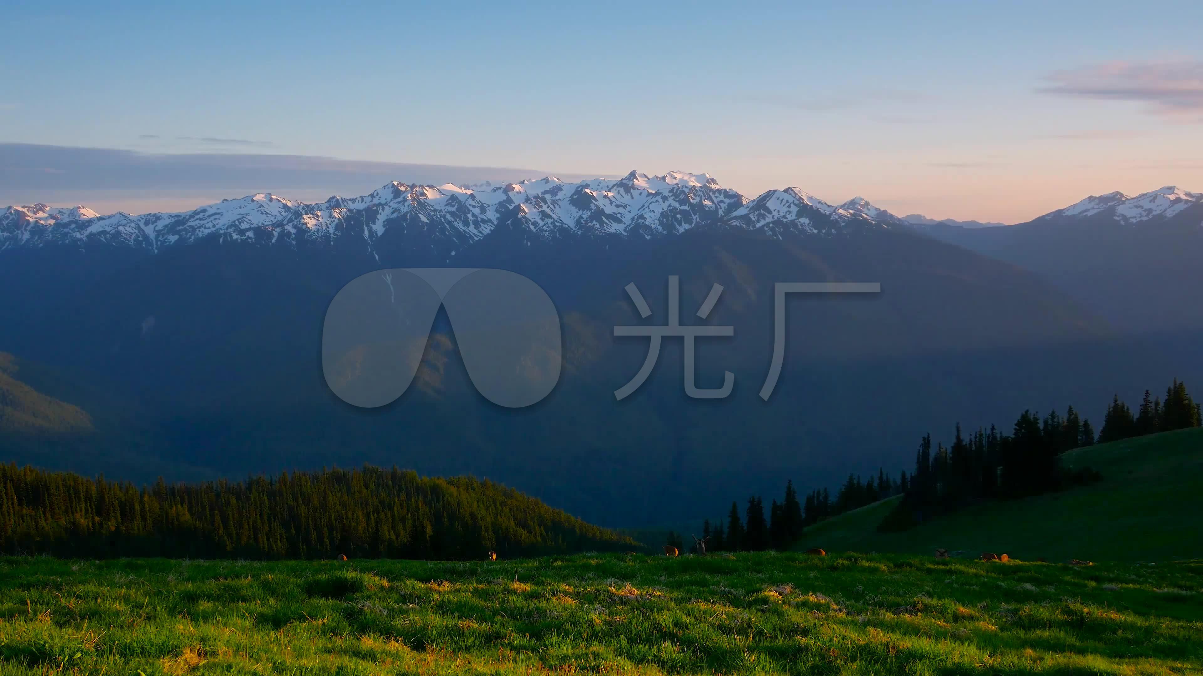 美丽大自然雪山草原小鹿风景_3840X2160_高泥视频v雪山图片
