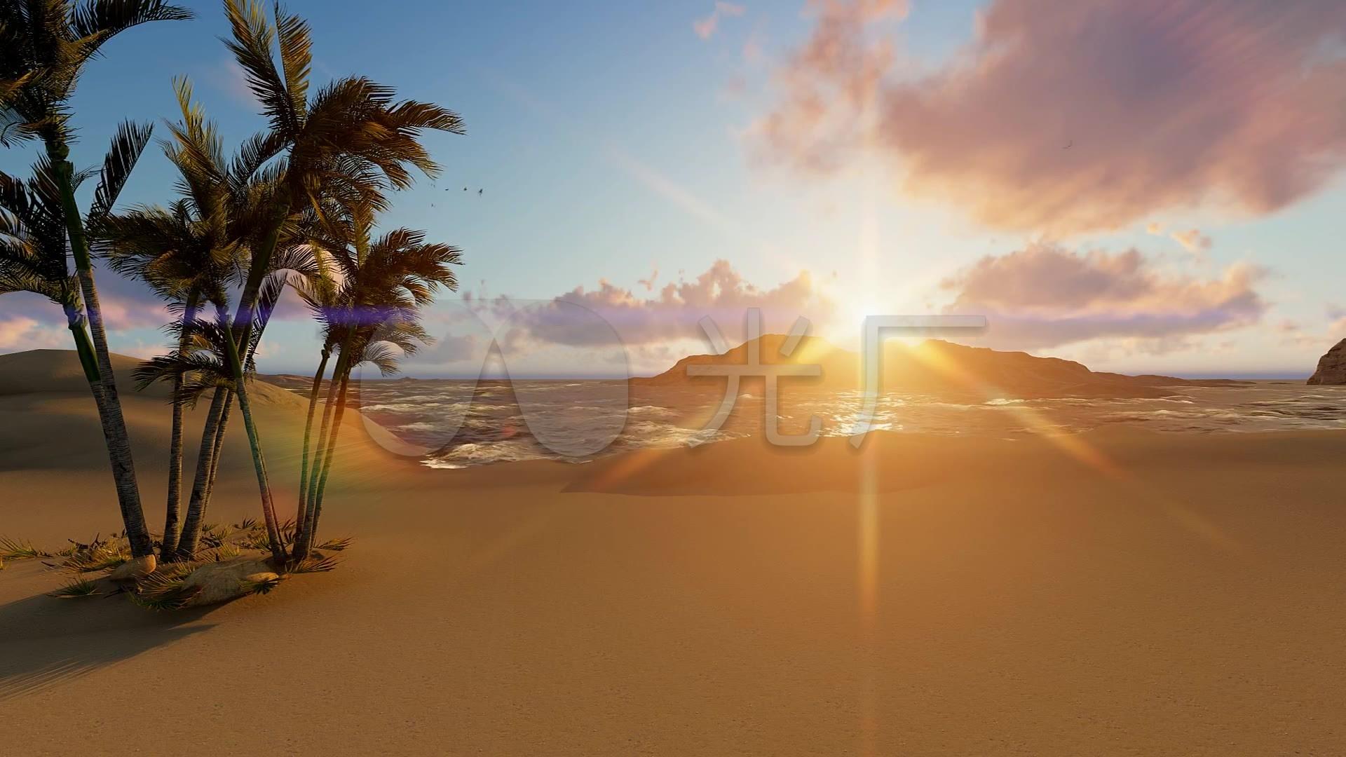 海边沙滩阳光椰子树_1920x1080_高清视频素材下载(:)