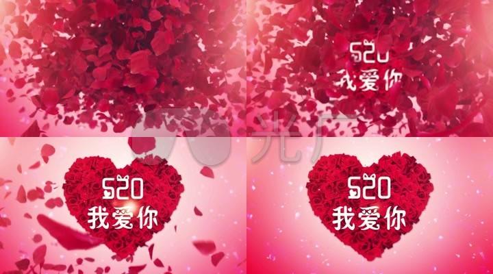 520我爱你浪漫玫瑰花瓣求婚表白开场片头