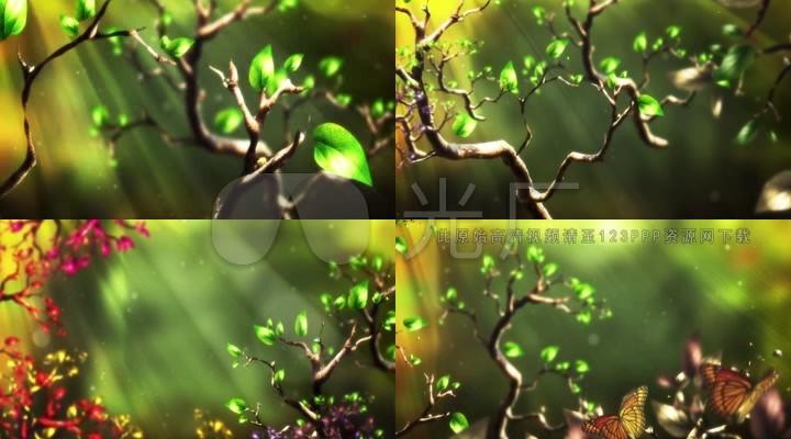 背景舞台粒子梦幻森林蝴蝶光线创海v背景图片