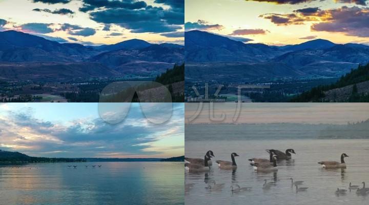 夕阳西下 鸳鸯游在湖面上