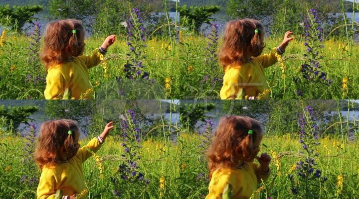 小女孩花园捉蝴蝶