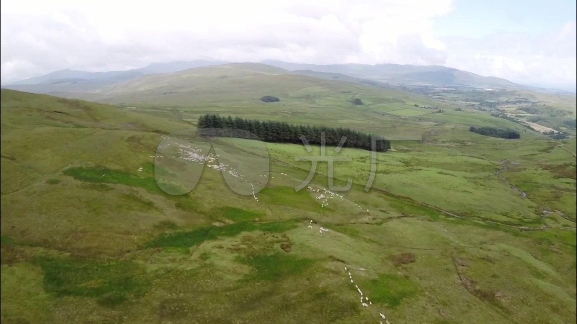 无人机航拍视频放羊_绵羊山坡放牧行进草原_肉视频膜饼图片