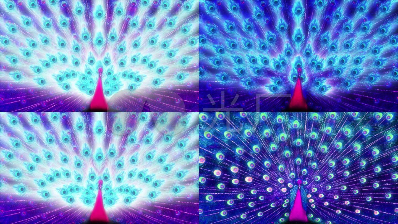孔雀孔雀开屏唯美七彩羽毛变色民族高清 【声明】vj师网所有原创作品