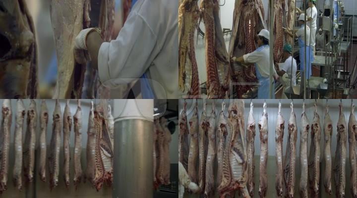 牛肉屠宰场_肉食_肉牛肉类加工厂