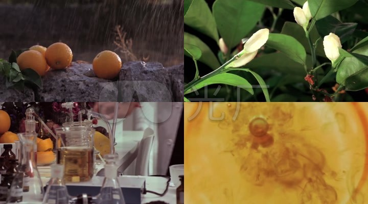 护肤品萃取天然绿色植物香橙精华成份精华