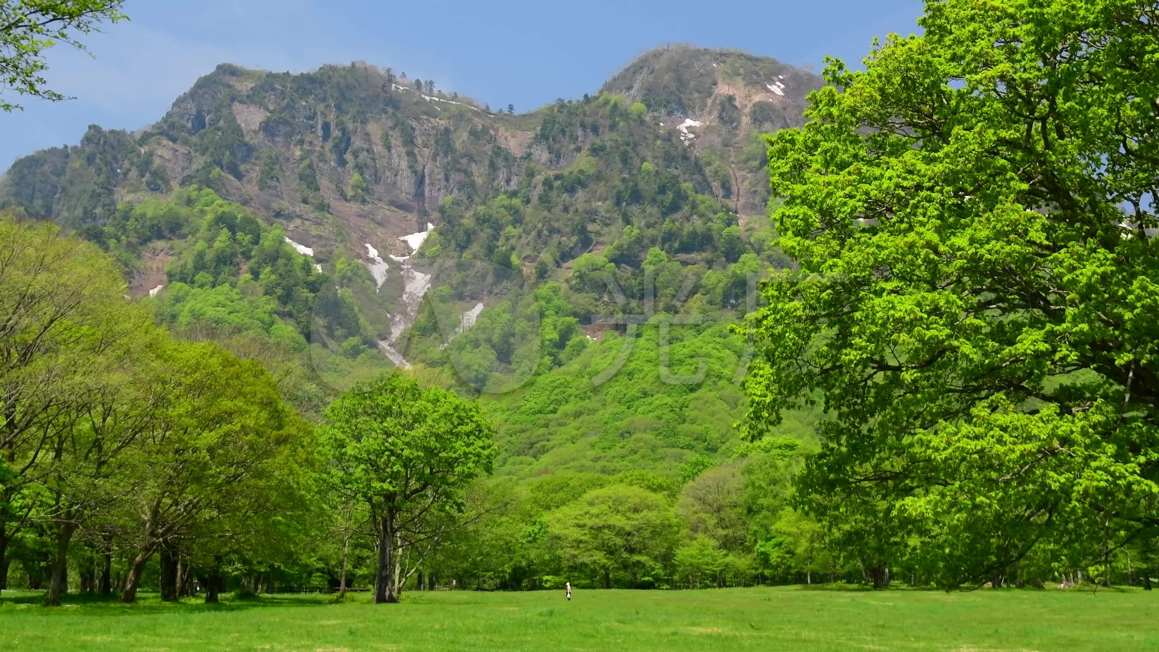 4k超清超美丽的绿色世界大自然美景_3840x2