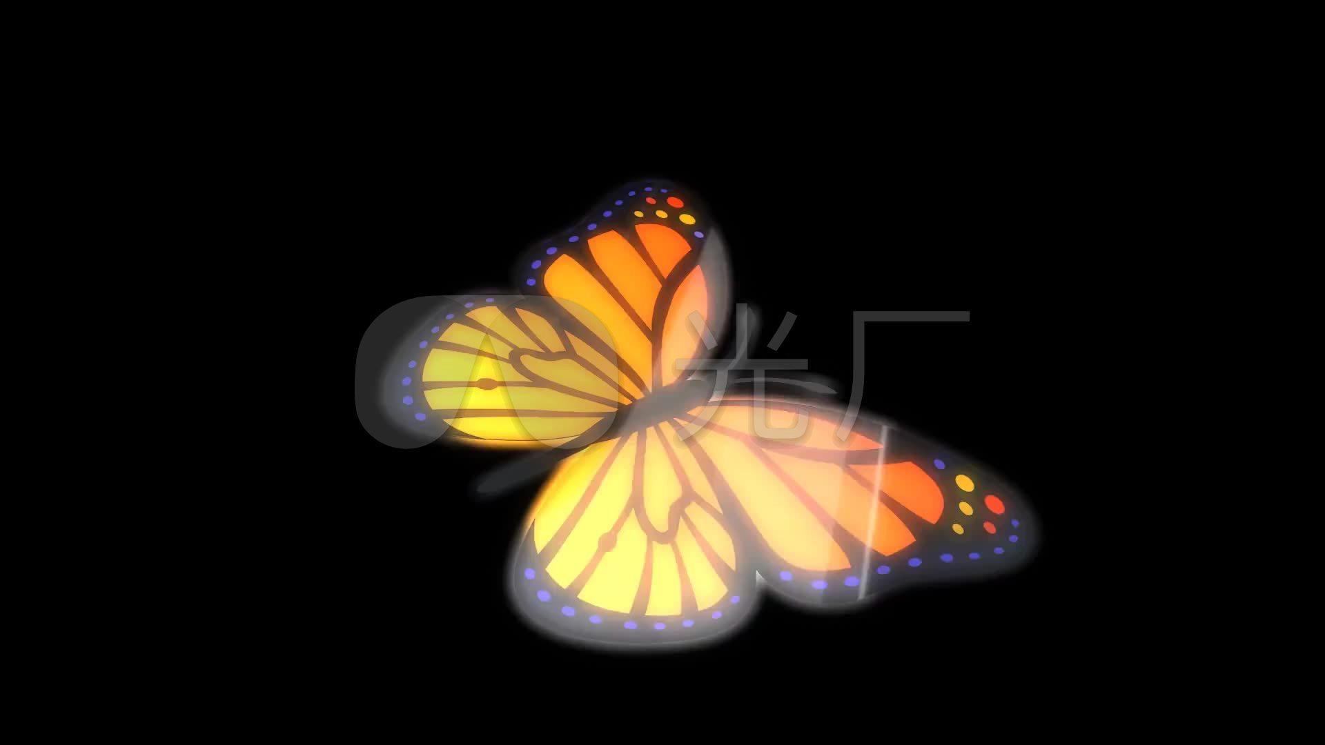 情色蝴蝶�y.d:`�_17d783蝴蝶翼拍圈循环色彩