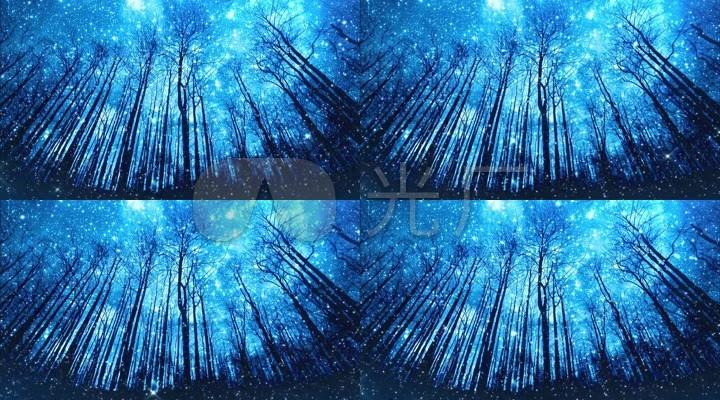 星空视频壁纸_唯美星空星光森林视频
