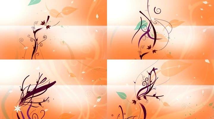 可循环的橘色背景下的花纹生长动画