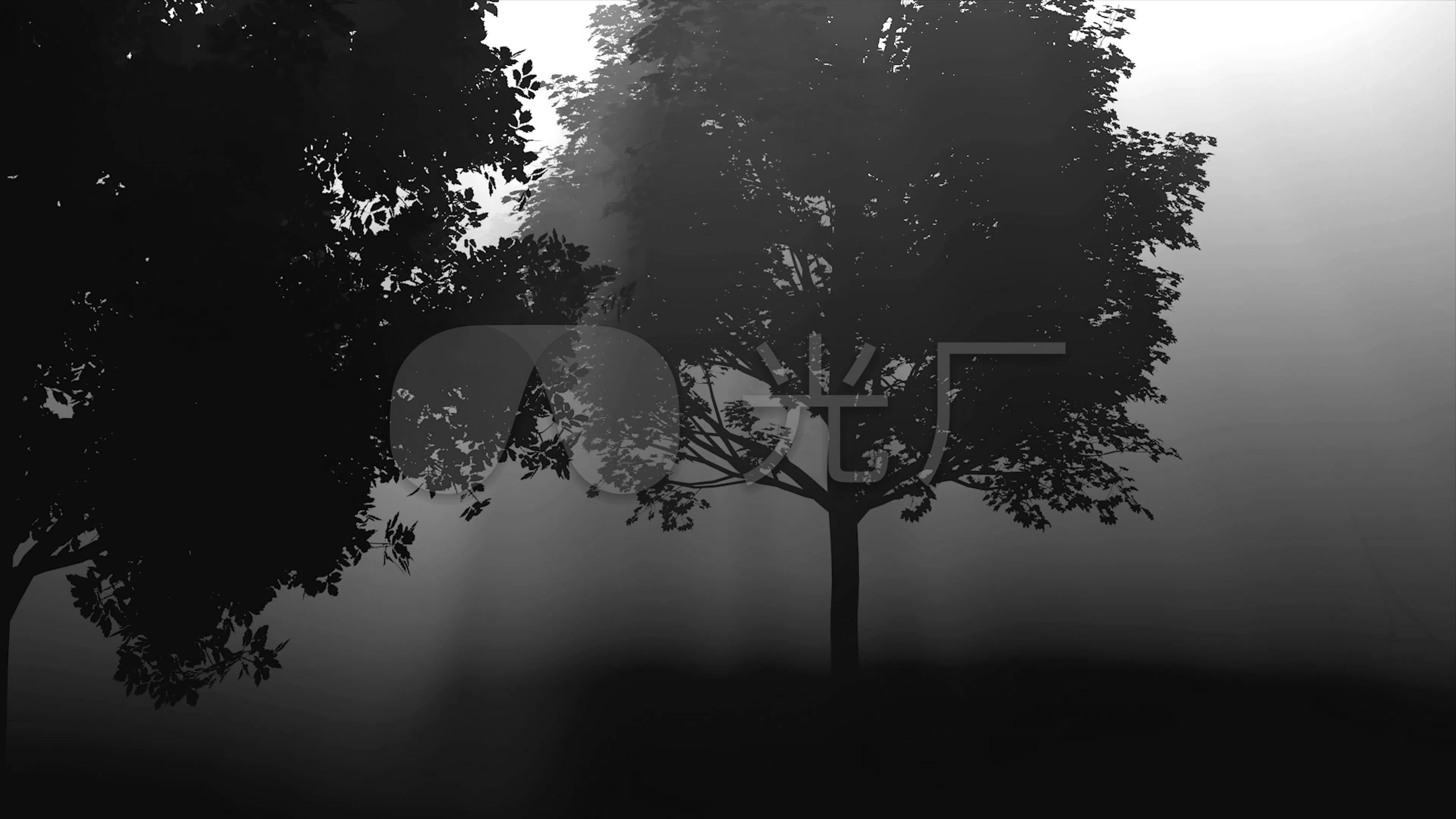 黑白森林舞台背景素材_3840x2160_高清视频素材下载