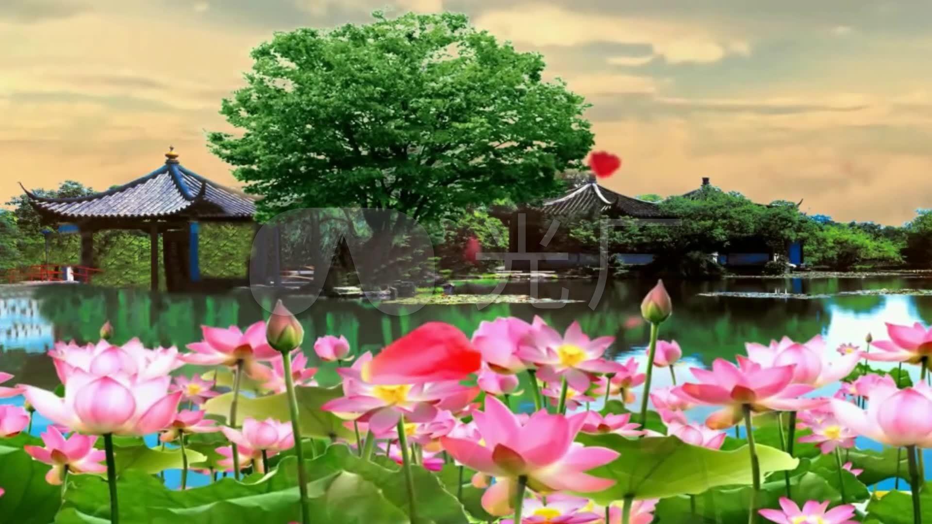 背景《太湖美》视频视频_1920X1080_歌曲视悟空剧高清斗图片