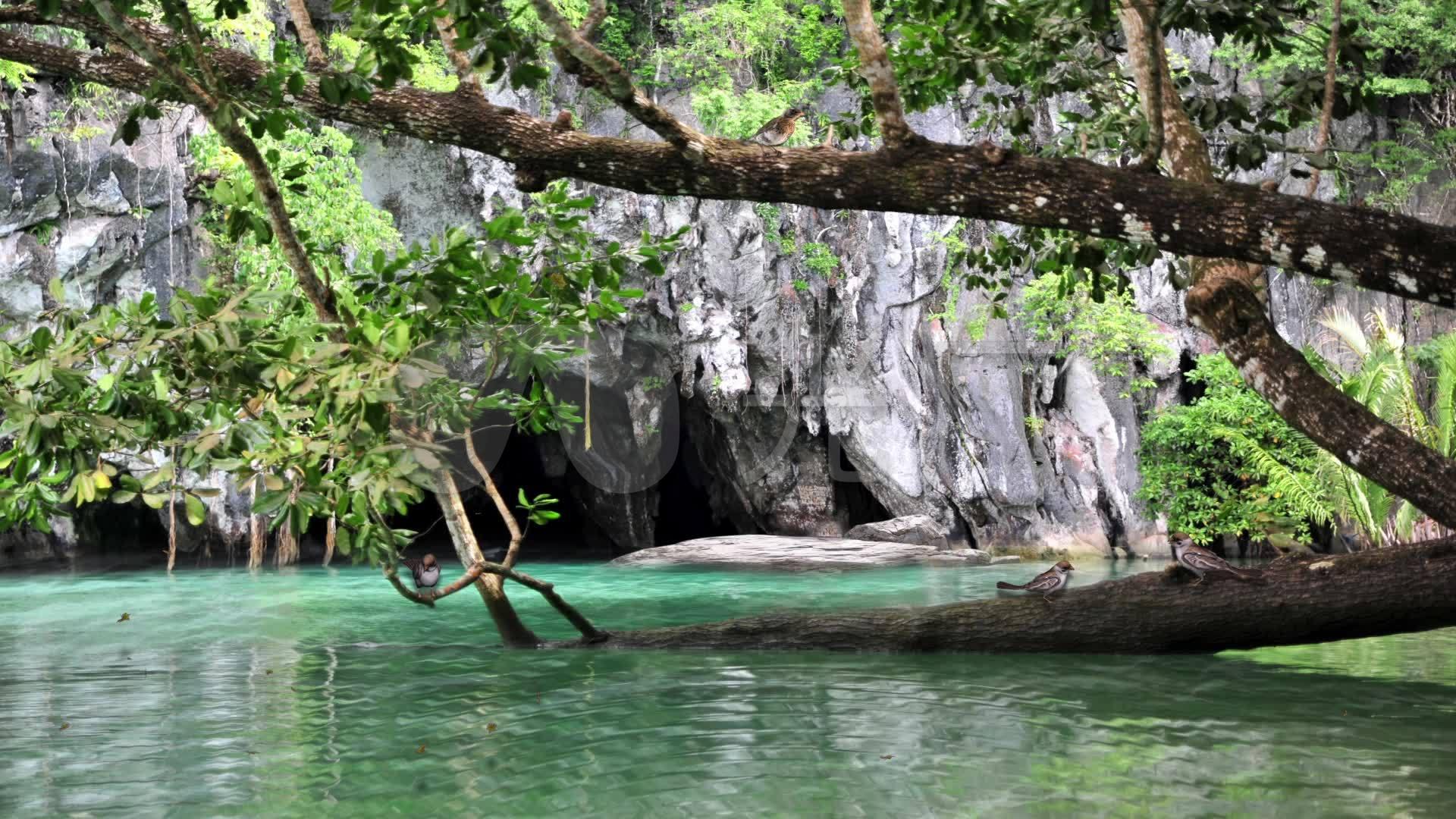 溪流水溶洞口小鸟树叶场景