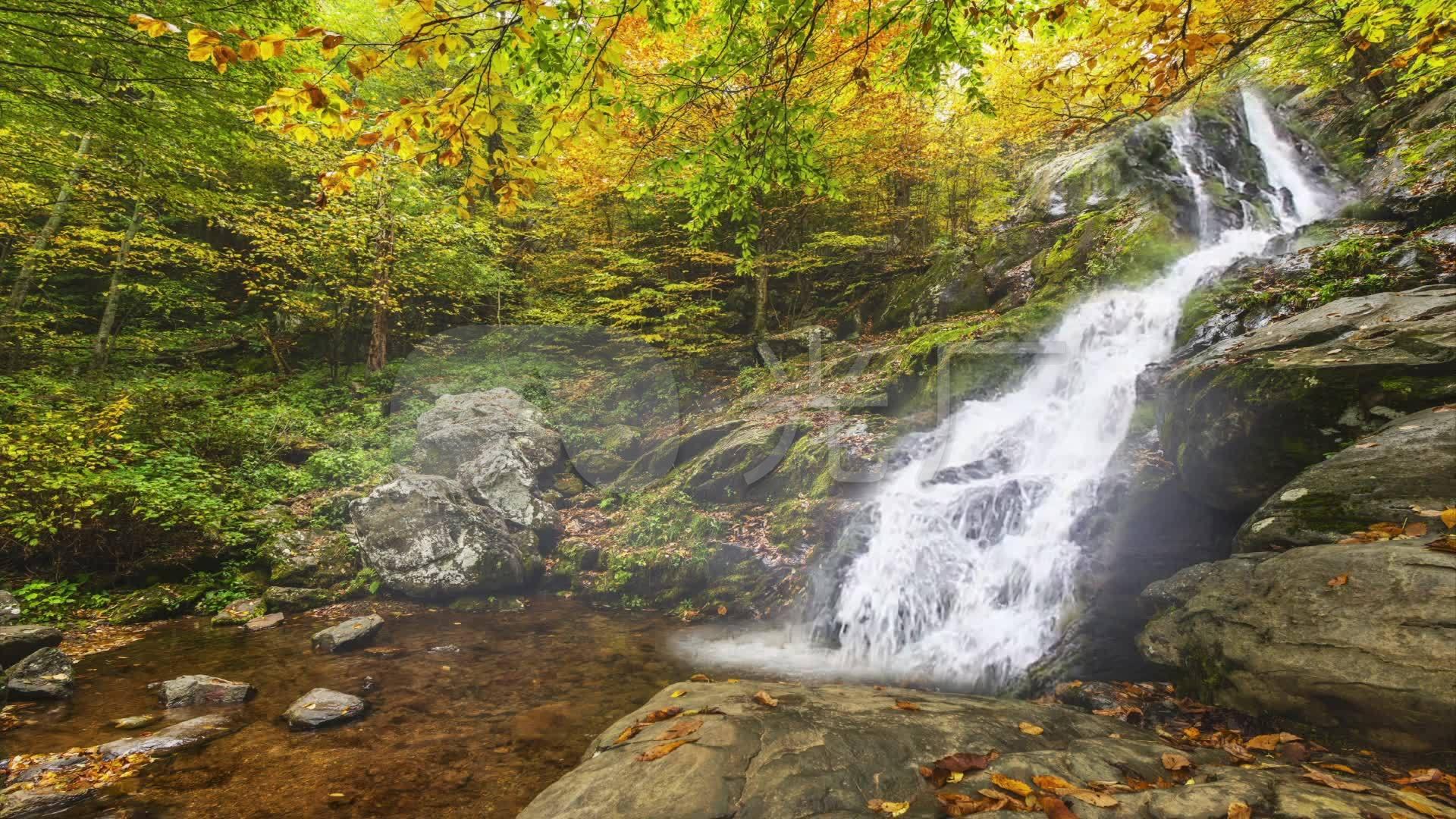高山流水瀑布枫叶秋季风景
