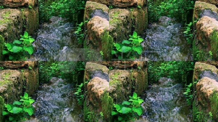 春天小溪流水