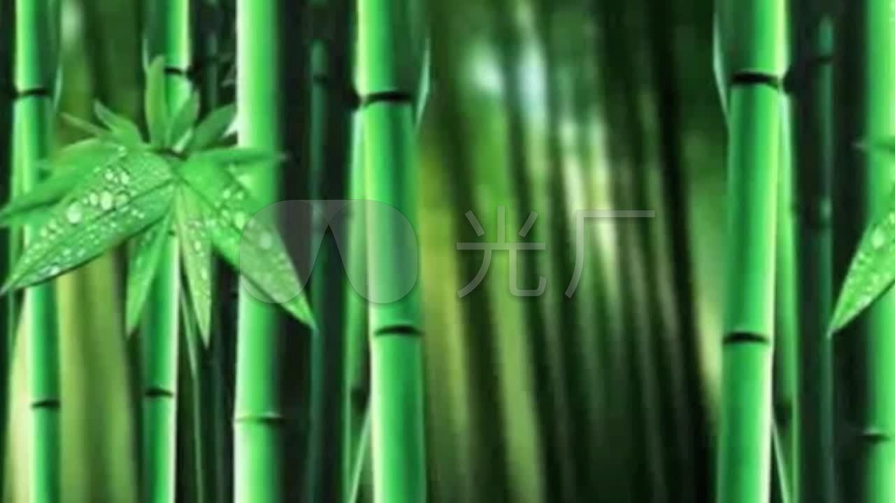成品音乐竹叶雨竹林音乐_1280X720_高清视频频小视竹子加图片