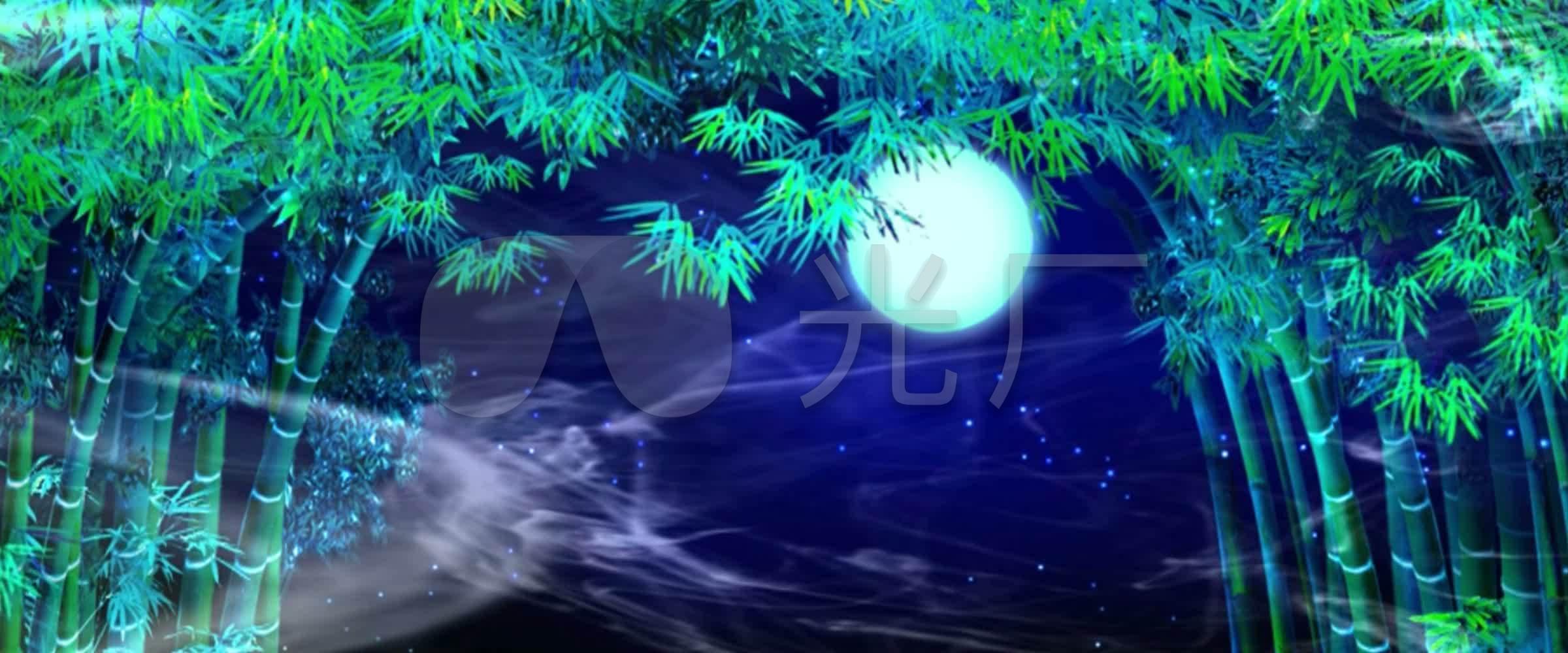 月光视频下的凤尾竹_2400X1000_视频高清素竹子唐渝杰图片