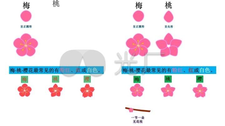 桃花折法步骤图