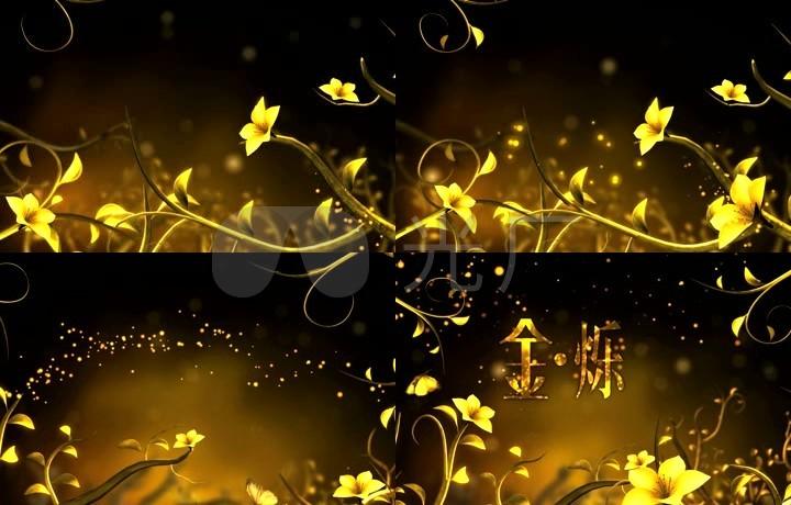 唯美大气花朵盛开