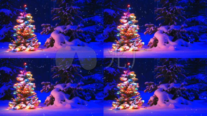 浪漫雪地圣诞树视频素材