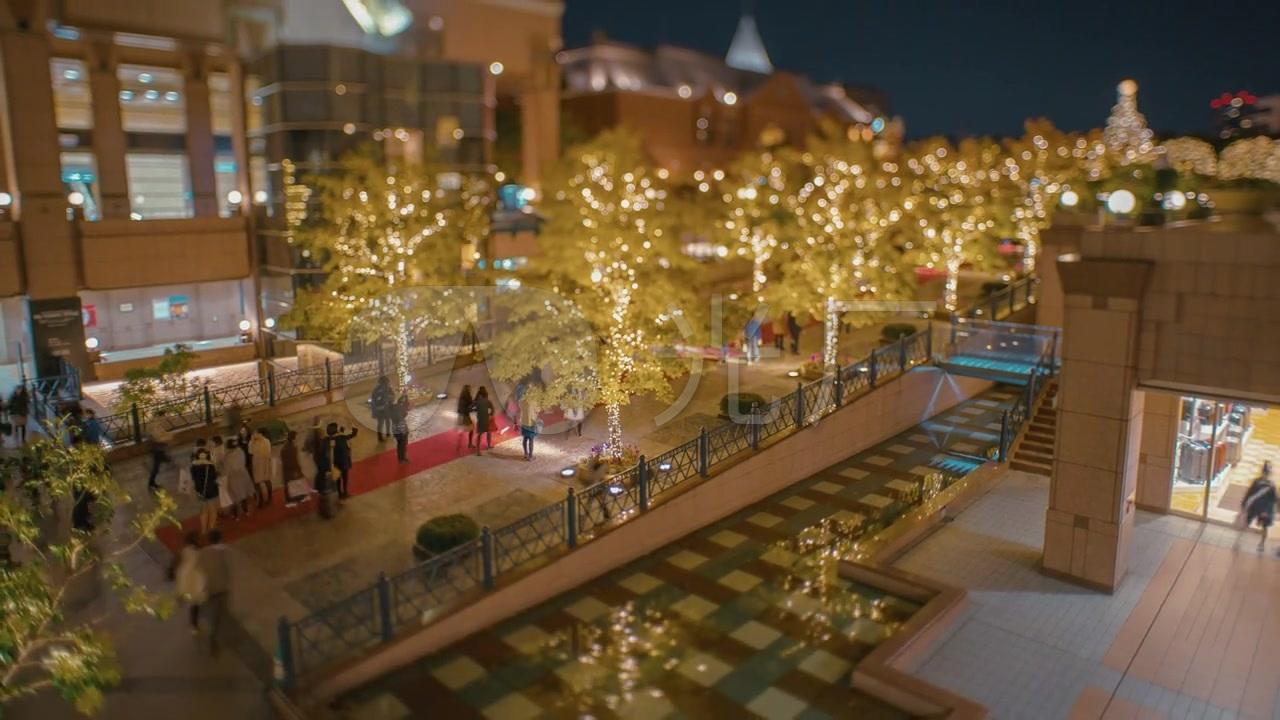 日本惠比寿景点视频高清广场_1280X720_游客1微信花园图片