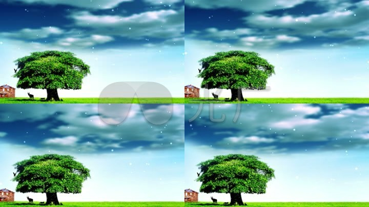 一棵大树原创唯美风景素材