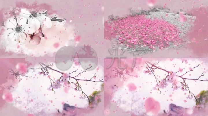 背景粉色背景花朵动态背景桃花花瓣飘落花瓣雨花瓣飞舞中国风古风风景