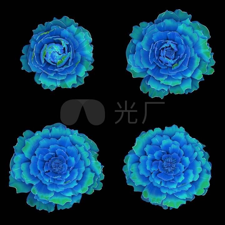 蓝绿色半透明高清05_1500X1500_牡丹敷料素视频视频图片