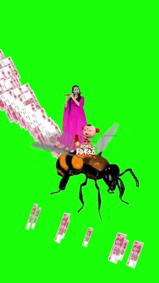 美女吹笛图片古装福娃钱粒子绿布_540X960_视频软件做蜜蜂图片