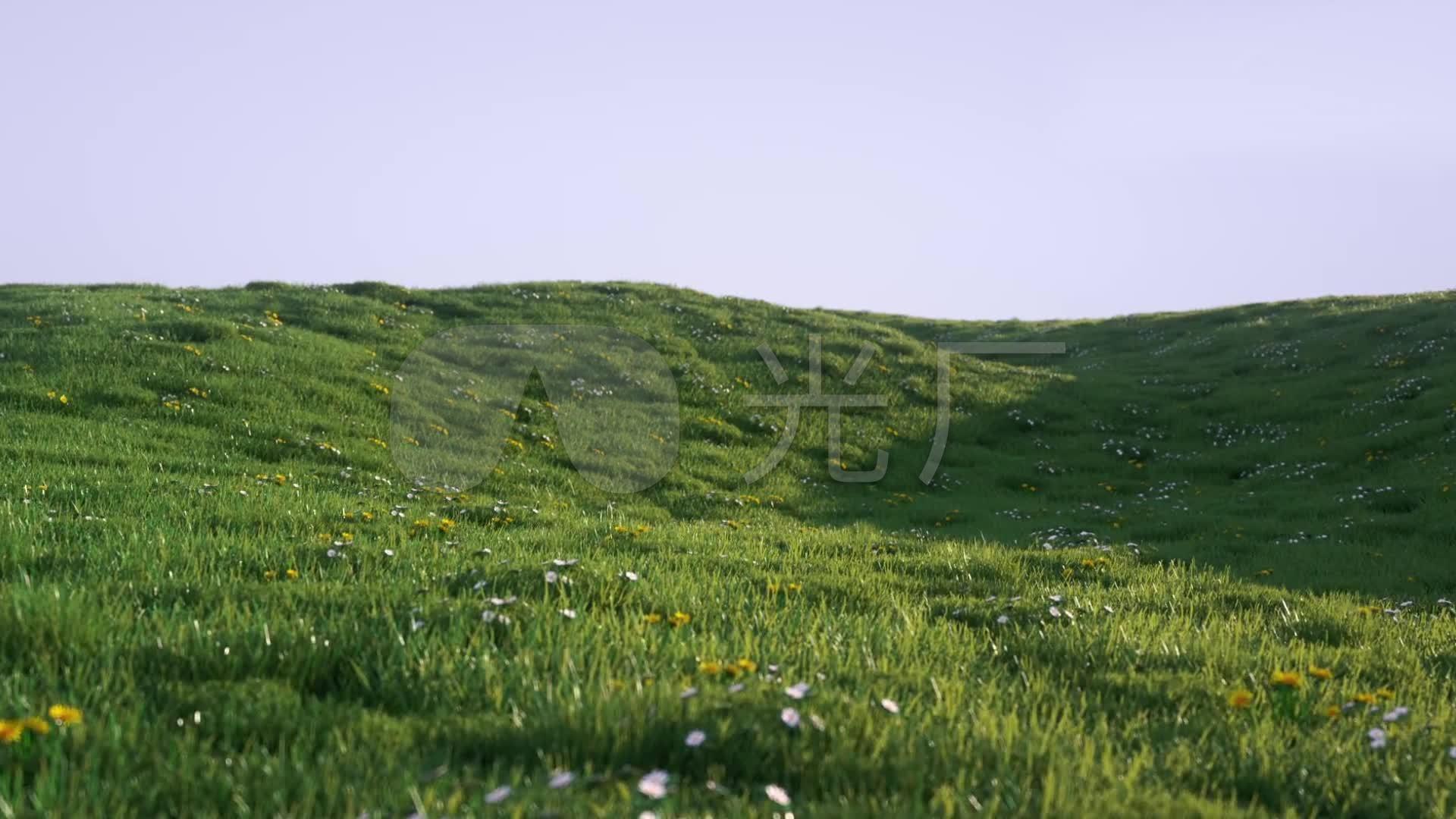 素材视频视频高清_1920X1080_视频素材青草绿地分室v素材图片