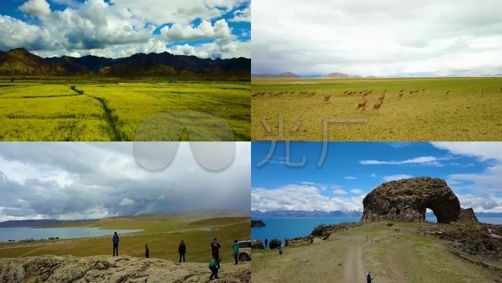 阿里小卫视安徽山峰航拍视频北线放牧_1920X西藏山地草原图片