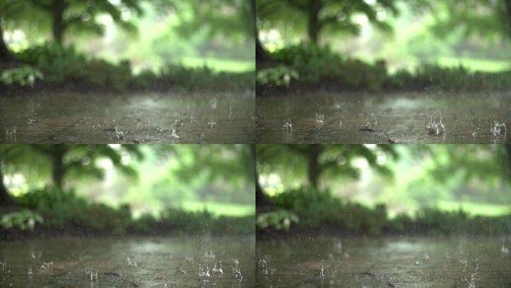 1080p【下雨】_1920x1080_高清视频素材下载(编号:)