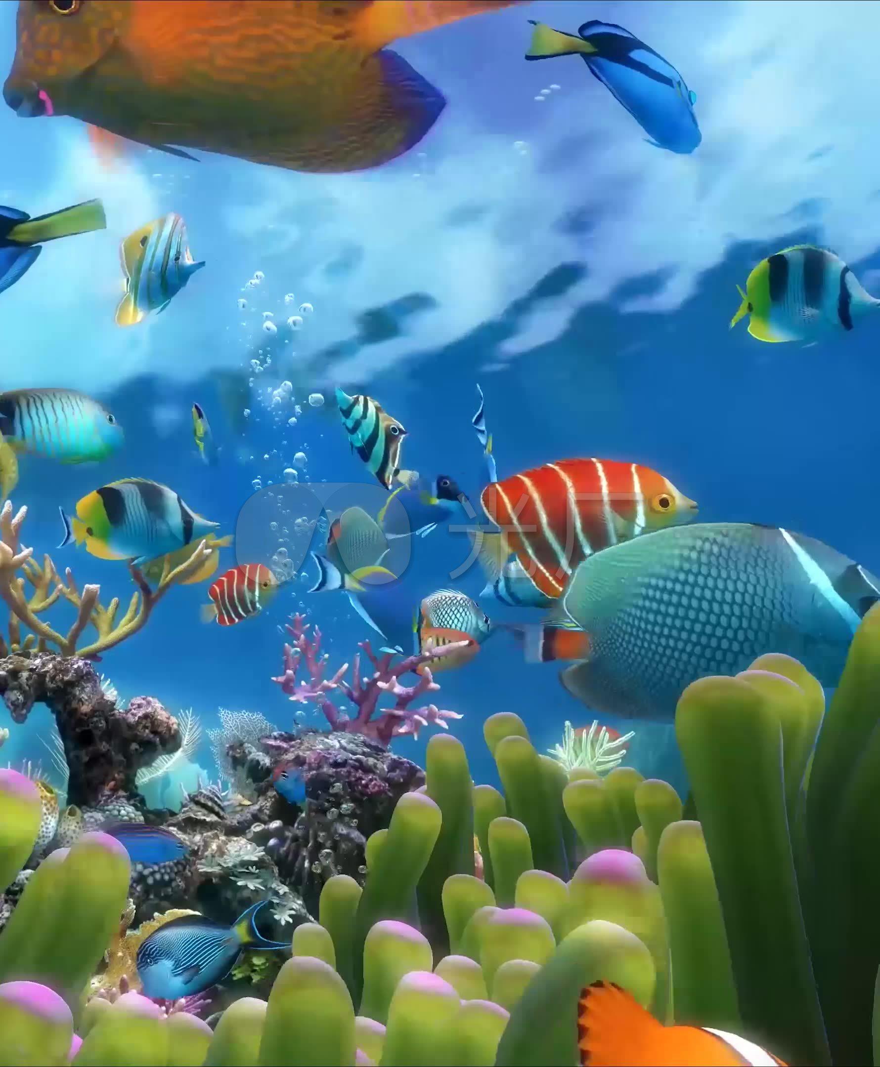 竖屏3d唯美梦幻海底世界水族馆热带鱼_1780x2160_高清