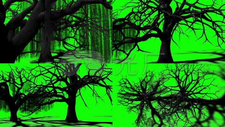 令人毛骨悚然的树绿幕