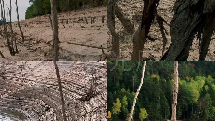 亂砍森林寫話_亂砍亂伐樹木的危害_大刀亂砍的土鱉游戲